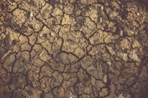 land in drought